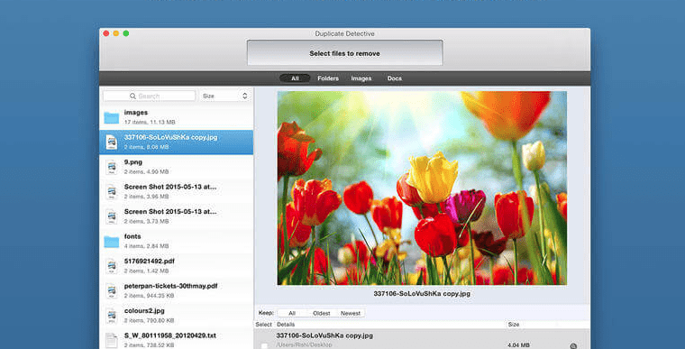 duplicate detective for duplicate file remover