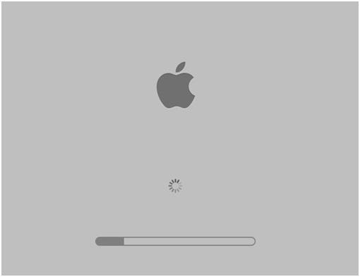 try Safe Mode Option on Mac